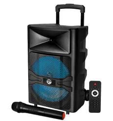 Diffusore amplificato 600W cn radiomicrofono