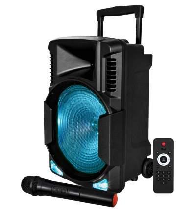 Diffusore amplificato 700W con radiomicrofono