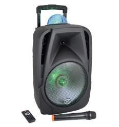 Diffusore amplificato 600W con radiomicrofono e effetto luce