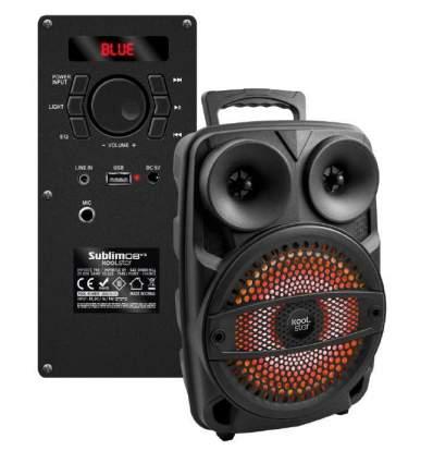 Diffusore amplificato con microfono e APP