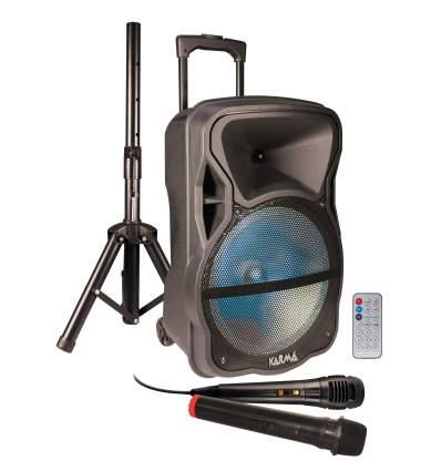 Diffusore amplificato con radiomicrofono 600W PMPO