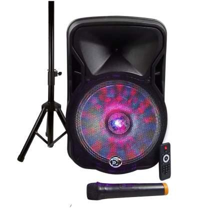 Box amplificato con radiomicrofono 600W PMPO